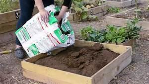 Gemüsegarten Anlegen Beispiele : gem segarten anlegen und sich ber frohe ernte auf balkon ~ Lizthompson.info Haus und Dekorationen