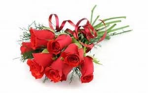 Valentine's day romantic rose HD desktop wallpapers free ...