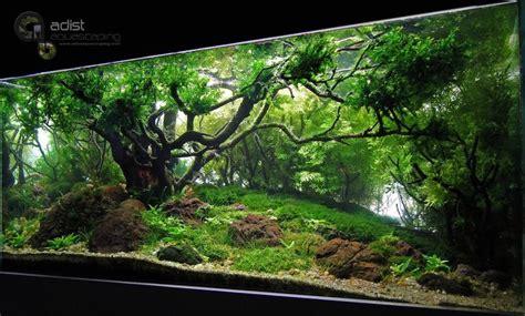 Aquascape Aquarium Designs Lighting