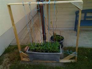 Tomaten Rankhilfe Selber Bauen : rankhilfe f r tomaten nicht sch n aber selten bauanleitung zum selberbauen 1 2 ~ A.2002-acura-tl-radio.info Haus und Dekorationen