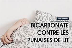 Produit Contre Les Punaises De Lit : ou trouver de soude simple bicarbonate de soude ~ Dailycaller-alerts.com Idées de Décoration