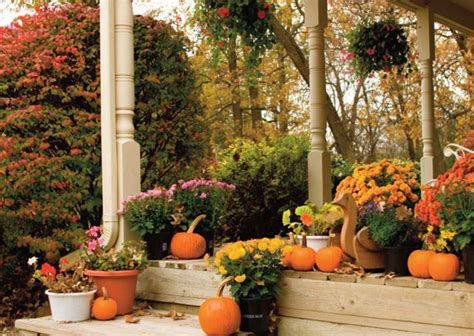 fall seasonal ideas decorating flower gardens