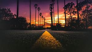 stock images los angeles california road palms sunset