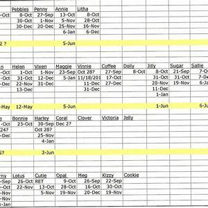 Personal Bookkeeping Excel Template Farm Spreadsheet With Farm Record Keeping Spreadsheets And