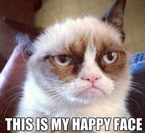 Cat Meme Faces - grumpy cat still grumpy