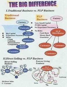 forever living marketing plan - Google Search | Bilder ...