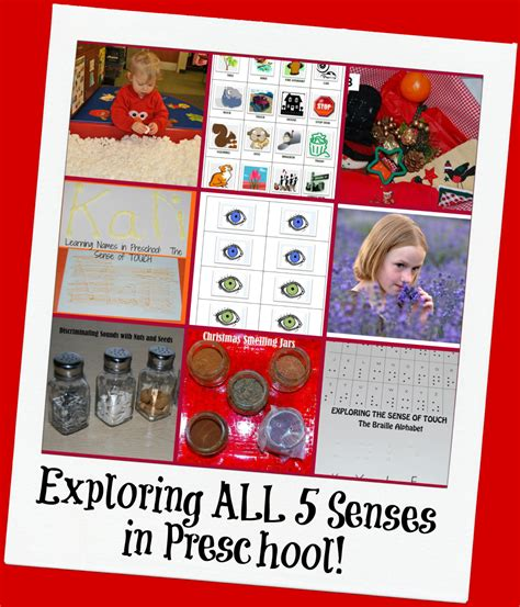 5 senses theme activities for preschool the preschool 5 | 5 Senses Theme Activities for Preschool