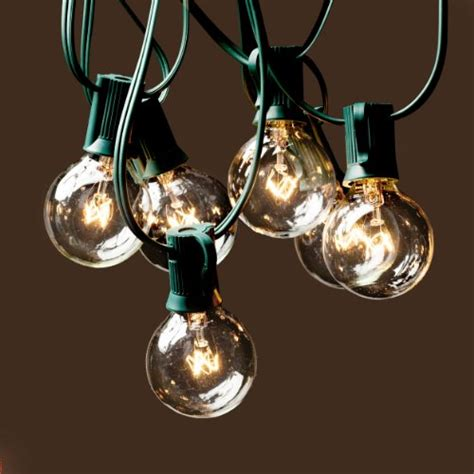 deneve g40 string lights with 25 clear globe bulbs green