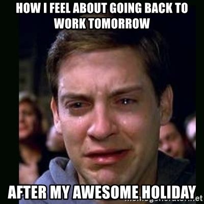 Going Back To Work Meme - how i feel about going back to work tomorrow after my awesome holiday crying peter parker