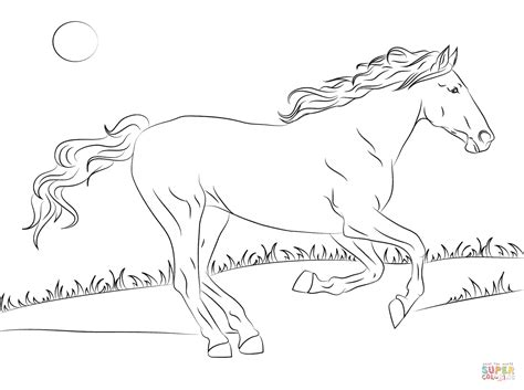 Beautiful Mustang Horse Coloring Page Free Printable