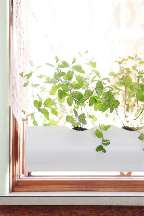 Kitchen Window Sill Planter by Indoor Window Planter Home Decor