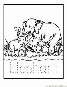 Coloring Pages Zoo Babies Elephant (Animals > Elephant ...