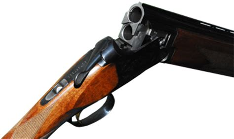 escopetas texas parks wildlife department