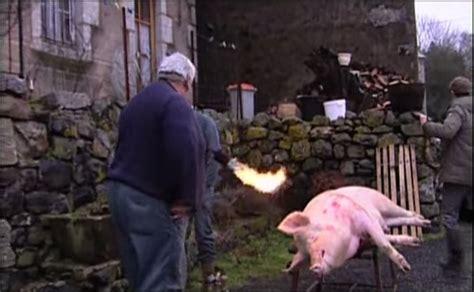 comment cuisiner un cochon éternelle un cochon hors de la baignoire
