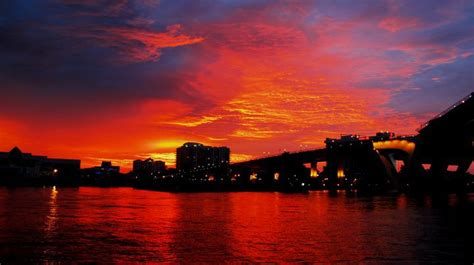 cast   day sunset cruise miamisailing charters