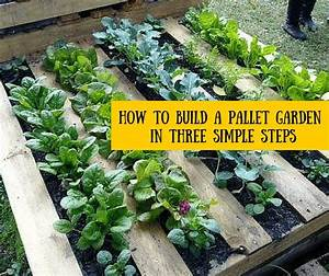 How To Build A Pallet Garden In Three Simple Steps  U00bb Hg