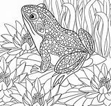Coloring Paradise Pages Tropical Printable Adult Getcolorings Getdrawings sketch template
