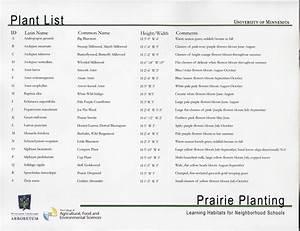 prairie, planting