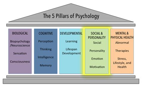 The Social And Personality Psychology Domain