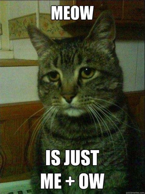 Cat Meow Meme - depressed cat meme cracks the meow code
