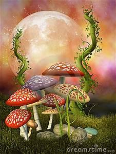 Production Management Mushrooms Royalty Free Stock Photo Image 13716855