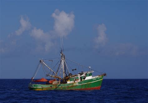 Shrimp Boat Hours by Pack Your Sea Legs Pretzels And Spend 12 Hours Wildlife