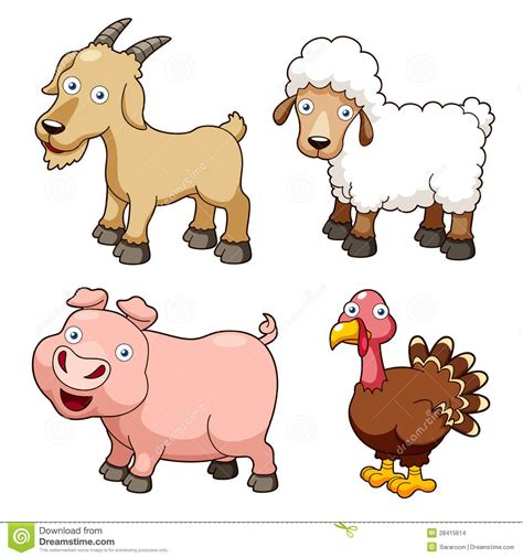 farm animals cartoon stock vector illustration  chick