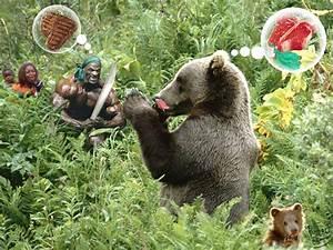 Omnivores Animals Eating