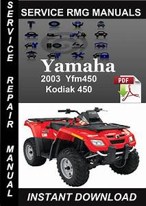 2003 Yamaha Yfm450 Kodiak 450 Service Repair Manual