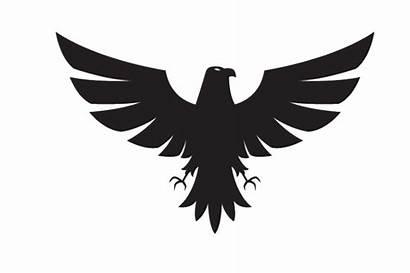 Blank Clipart Aguia Picsart Silhouette Shutterstock Eagle