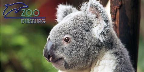 gutschein zoo  statt