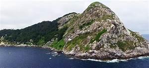 Snake Island | Ilha da Queimada Grande | Prohibited Area ...