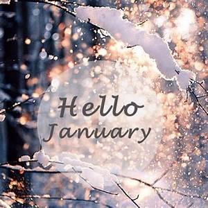 Goodbye December Hello January 2016 | Daily Roabox