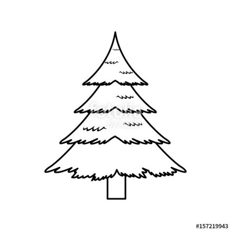pine tree outline  clip art