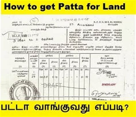apply patta  land  tamilnadu kadhambam