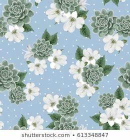 Succulent Garden Images Stock Photos Vectors Shutterstock