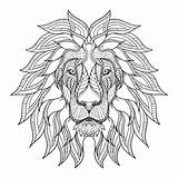 Lion Coloring Head Lions Mane Pages Adult Animals sketch template