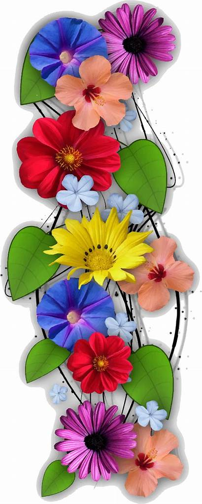 Flower Flowers Clipart Vertical Collage Transparent Floral