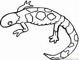 Coloring Gecko Lizard Pages Lizards Coloringpages101 Pdf sketch template