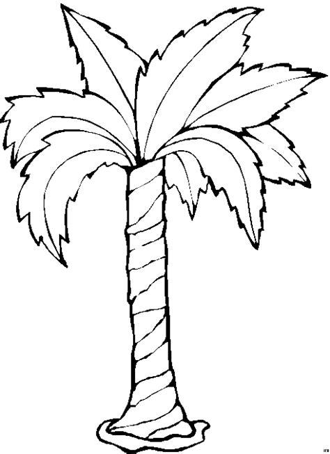 palme ausmalbild malvorlage blumen