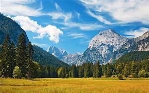 Montagnes, arbres, nuages, herbe, automne HD Fonds d'écran ...