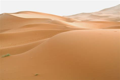 how do dunes form how do sand dunes form is realty executives mi invoice