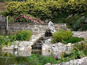 Baum Kleiner Garten : welcher baum im garten top baum im garten wild aufgegangen salix caprea with welcher baum im ~ Orissabook.com Haus und Dekorationen