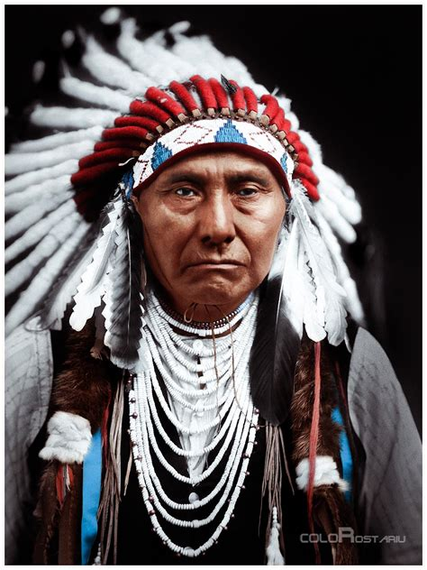 Indian Chief Picture by American Indians Colorostariu