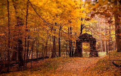 Autumn Leaves Nature Wallpapers Move Filed Under
