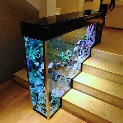 bettafish aquarium fish fishtank tropicalfish