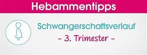 Schwangerschaft 3 Trimester : schwangerschaft geburt ratgeber ~ Frokenaadalensverden.com Haus und Dekorationen