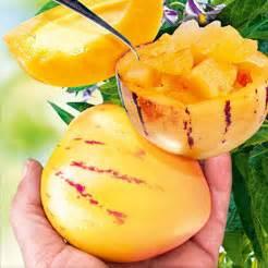 Obst Online Bestellen : obst obstpflanzen online kaufen bestellen bei baldur garten ~ Orissabook.com Haus und Dekorationen