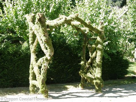 Moss Covered Natural Wedding Arch Oregon Coastal Flowers