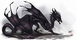 Black Wyvern by Adalfyre on DeviantArt